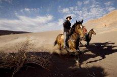 Sequitor Horseback Riding