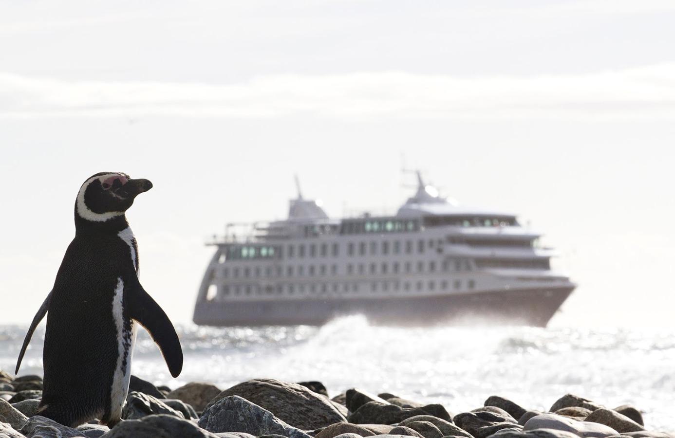 Crucero Ventus Australis / Ushuaia - Punta Arenas