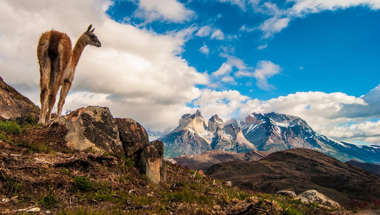 Maravilhas da Patagônia