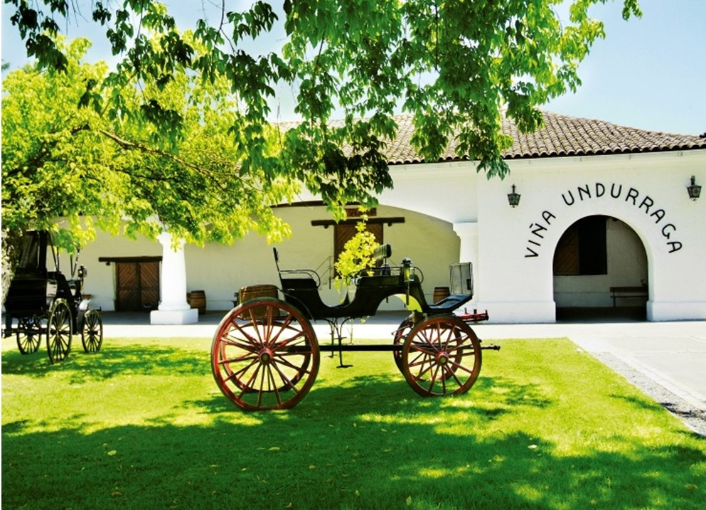 Undurraga Vineyard Wine Tour