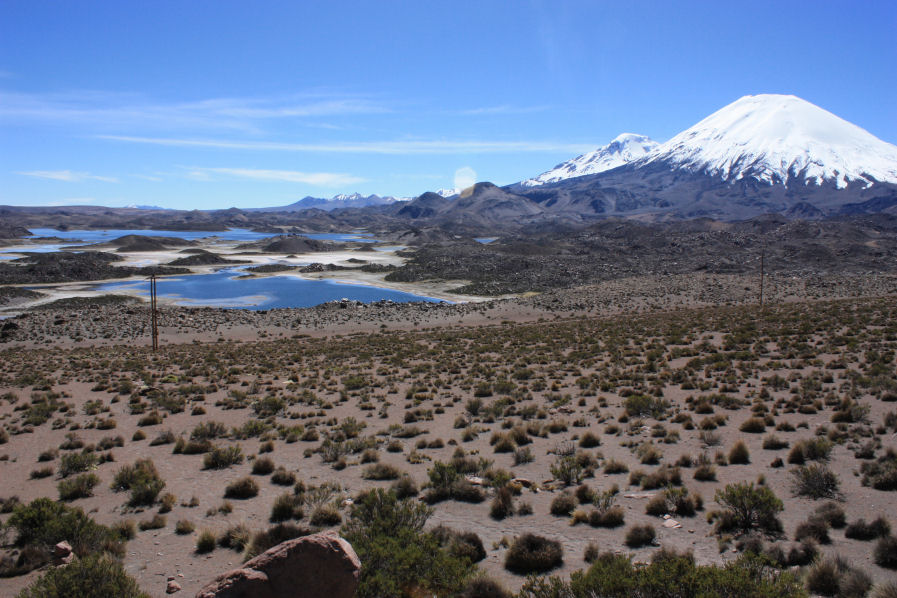 Codpa Valley Lodge: Highlights of the Altiplano