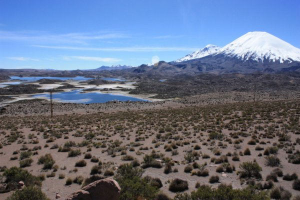 Codpa Valley Lodge: Highlights do Altiplano
