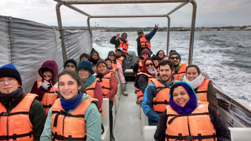 Damas Island: Humboldt Penguin National Reserve