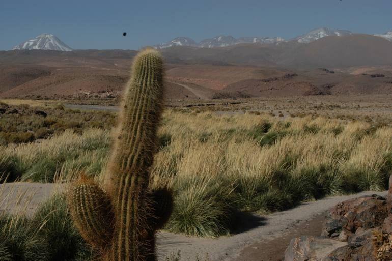 Trekking Guatín