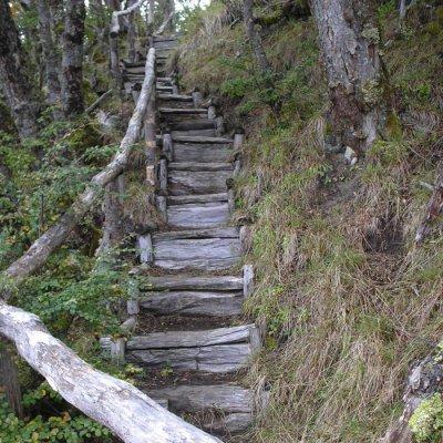 Suave Trekking en Reserva Parrillar