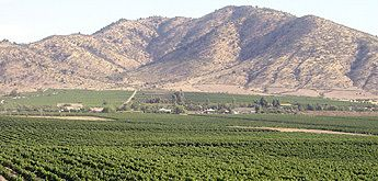 Colchagua Valley and Santa Cruz Vineyard