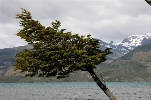 Overland Adventure from Torres del Paine to Tierra del Fuego