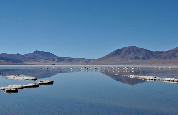 Huasco Lagoon