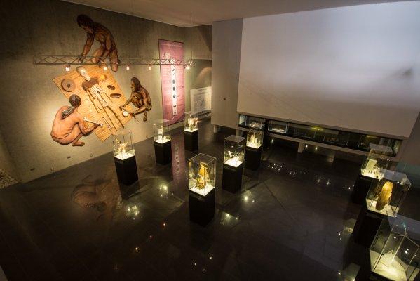 Museo Arqueológico San Miguel de Azapa