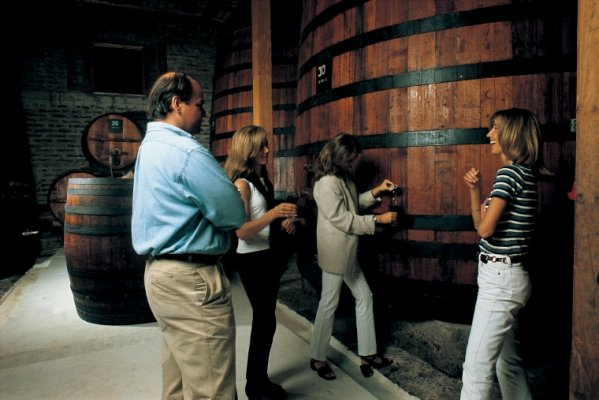 Full day excursion: Concha y Toro and Aquitania Vineyards