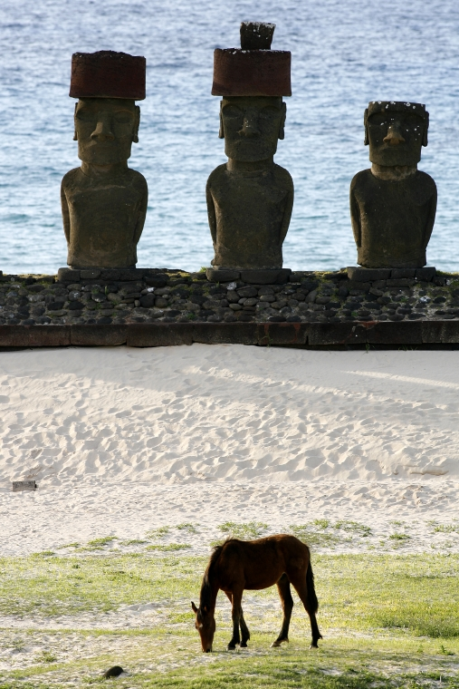 Easter Island in a budget with airline ticket. Departures March 2014