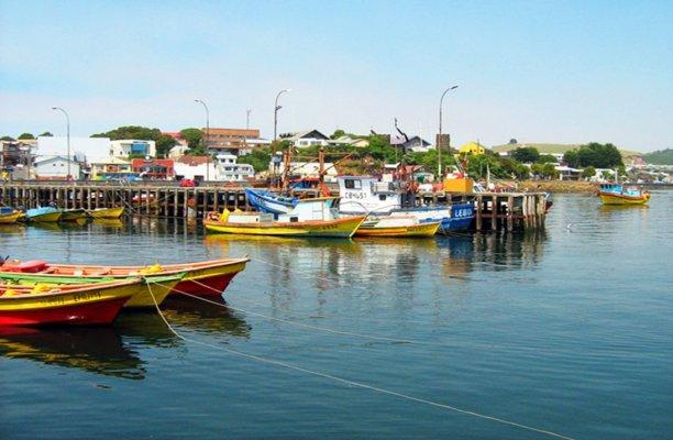 Ilha de Chiloé: Ancud e Puñihuil