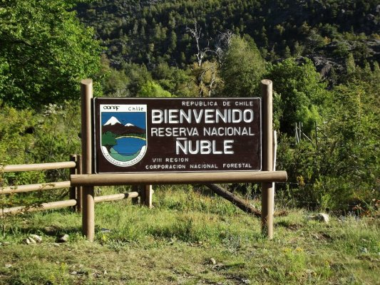 Ñuble National Reserve