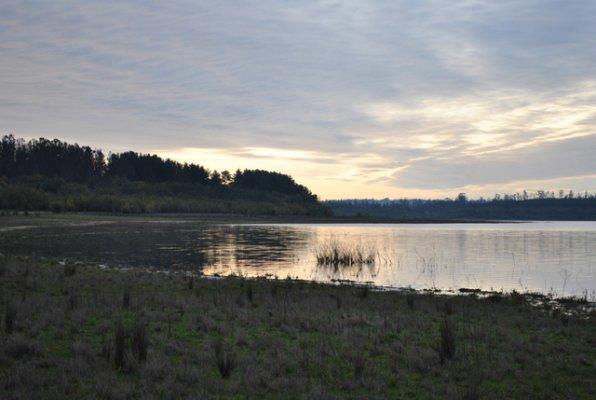 Peñuelas Lake Forestal Reserve