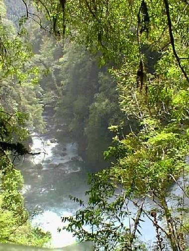 Anti-Stress: Naturaleza total en Lodge Fiordo Queulat.